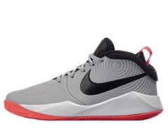 Кроссовки Nike Team Hustle 9 (GS) (AQ4224-007) - оригинал в Украине