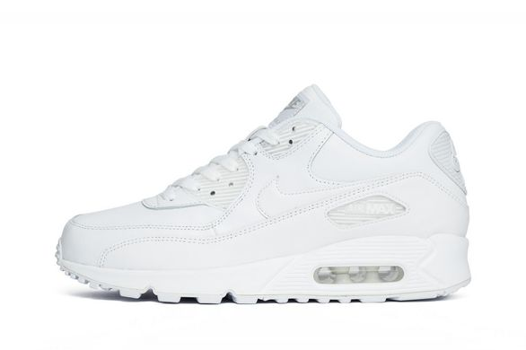 Кроссовки Nike Air Max 90 Leather (302519-113), 41, Nike Air Max